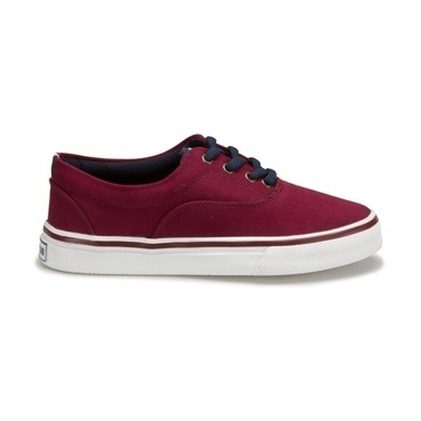 Panama Club Sneakers Bordo